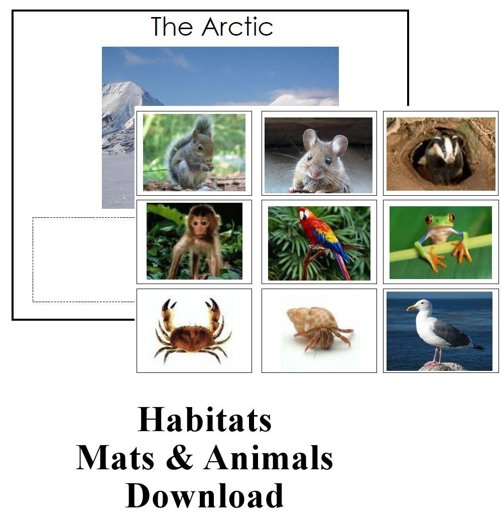 CHSH - Ecology Habitats Teaching Resources and Downloads