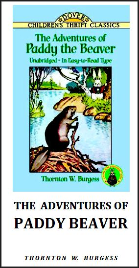 lewis carroll report the authors biography and an analysis of his works Lewis carroll, the victorian author, was born on on january 27, 1838, in cheshire england he was the eldest boy of eleven children throughout his school years, lewis carroll excelled in math and other subjects.